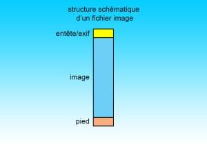 Schéma des données exif dans un fichier image.