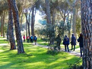 Ruta por el Monte del Pilar