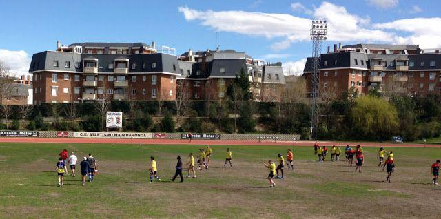 Rugby: CR Majadahonda B pierde ante el Alcorcón (5-22) pero un error arbitral decantó el partido