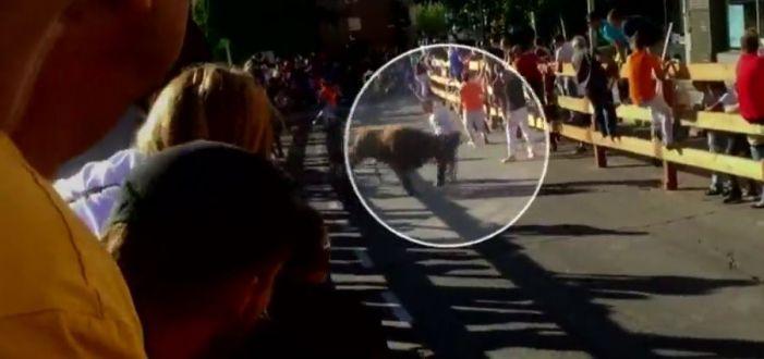 El Ayuntamiento de Majadahonda prohibe los encierros taurinos a borrachos, drogados y locos