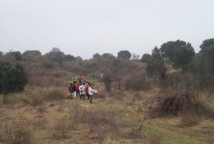 Amigos de los Caminos Majadahonda gana una batalla legal al concejal Riquelme sobre el Monte del Pilar