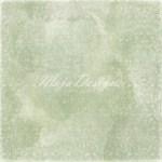 620-The-elegant-Winehouse