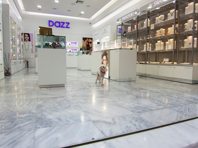 A small white poodle inside a jewelry store