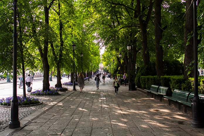 Tree-lined sidewalk at Karl Johan in Oslo