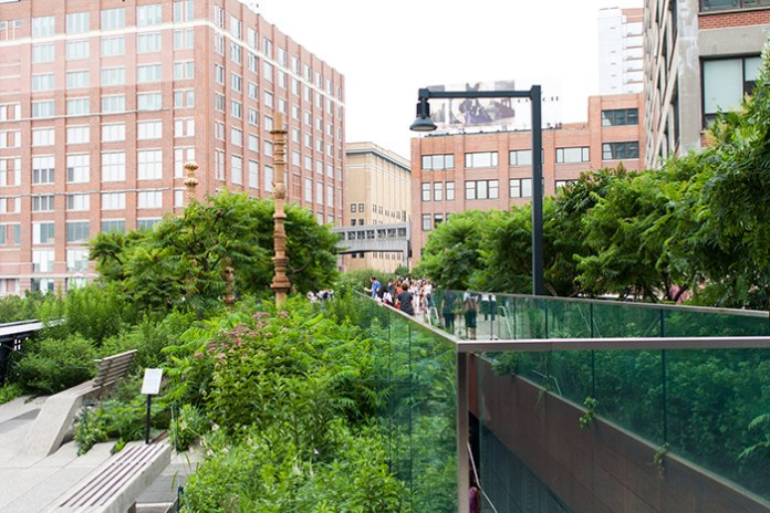 Lush green view on top of the High Lines