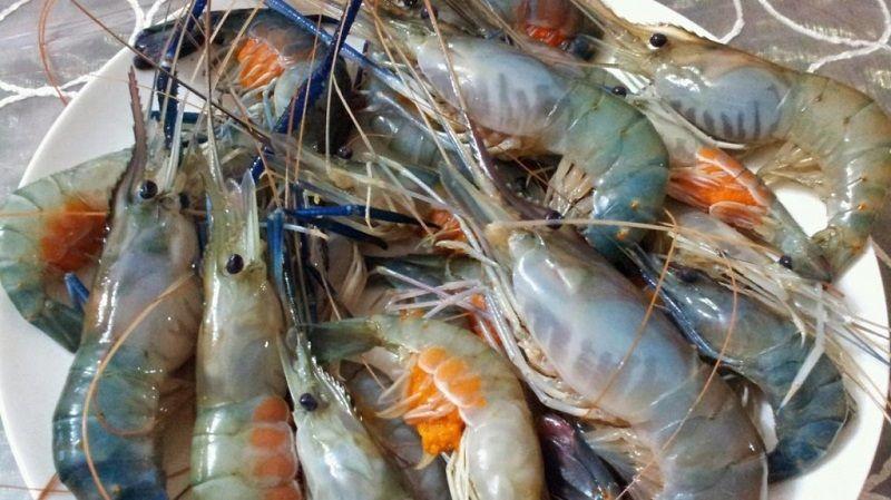 Harga Ikan Laut Konsumsi per kg 2018  NamaNama Hewan