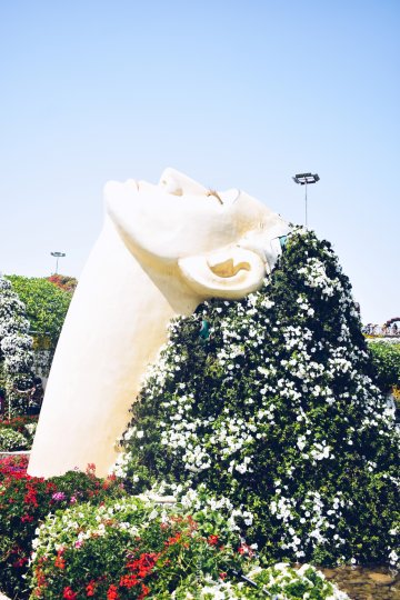 5 Places Worth Seeing in Dubai- miracle gardens woman's head