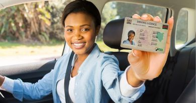 original driving licence