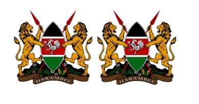 Kenyan dual citizenship application