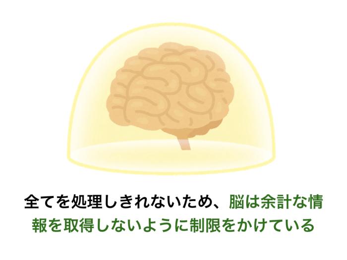 全てを処理しきれないため、脳は余計な情報を取得しないように制限をかけている