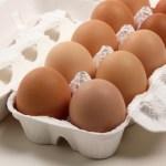 卵1パックの値段は様々。その価格差は〇〇〇の違いだった!