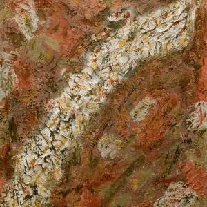 WILD NATURE por María José Cano, técnica mixta | majocano.com Expresionismo Abstracto pintura artística