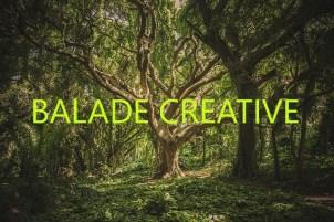 balade créative nature