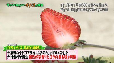 matuko-ichigo28