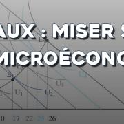 Préparation aux oraux : misez sur la Microéconomie