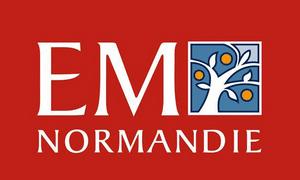 20. Logo EM Normandie