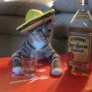 L'effet Tequila, c'est quoi?
