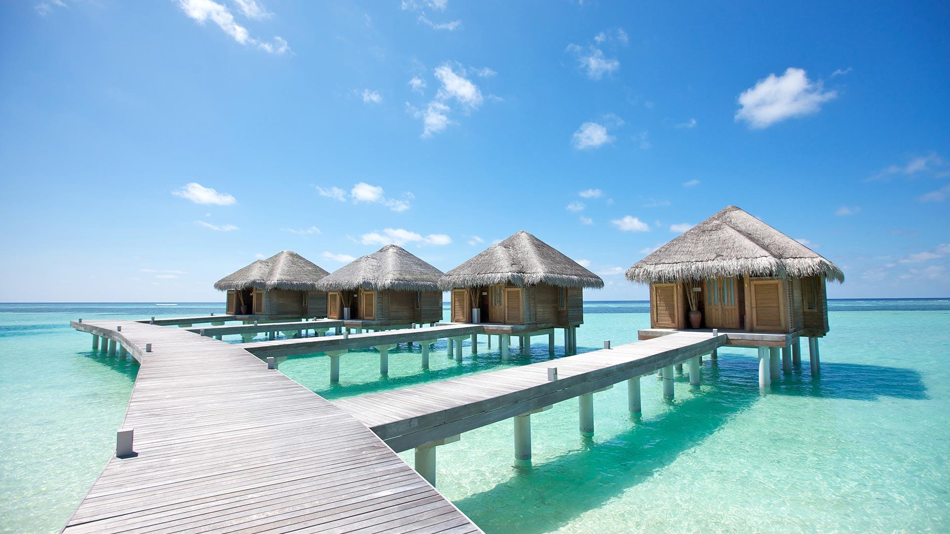 La face cachée des Maldives - Major-Prépa