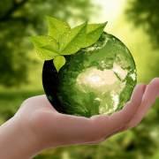 Articles-exemples : L'environnement – Les Yeux du Monde