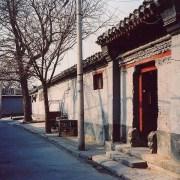 中国大都市 Entre tradition et modernité