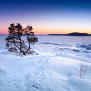 Le modèle social dans les pays nordiques