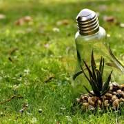 Le rapport paradoxal de l'Allemagne avec l'environnement
