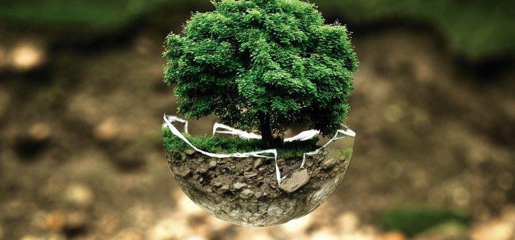 Liste de vocabulaire : l'environnement (環境)