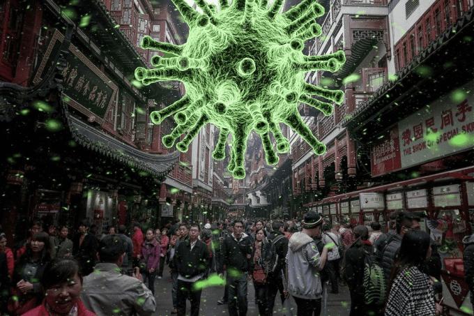 Coronavirus dans l'actualité de l'Amérique Latine