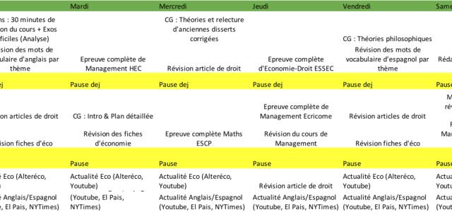 Deux exemples de programmes de travail d'étudiants d'ECT à HEC