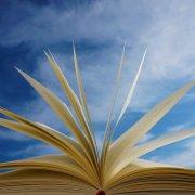 Synthèse de textes ESCP 2020 notée 20/20