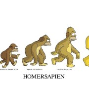 Darwin – L'animal, l'homme et l'évolution