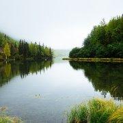 Entraînement pour les oraux d'anglais : environnement et écologie en Angleterre