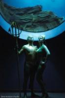 Hansard Aquaman 4