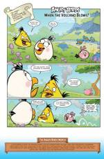 AngryBirds_12-3