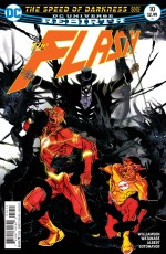 flash10cover