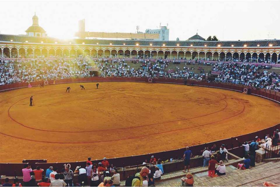 Best things to do in sevilla spain plaza de torros