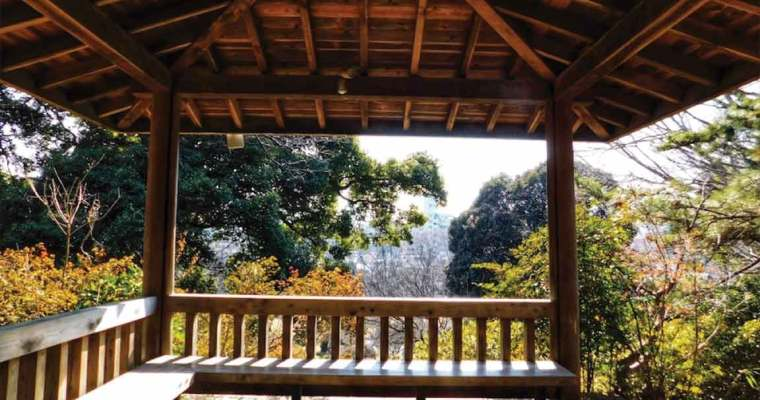 Tokyo, Japan Day 4 – Sushi and Plum Blossoms