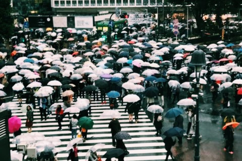 Umbrellas Cultural Differences in Tokyo Japan