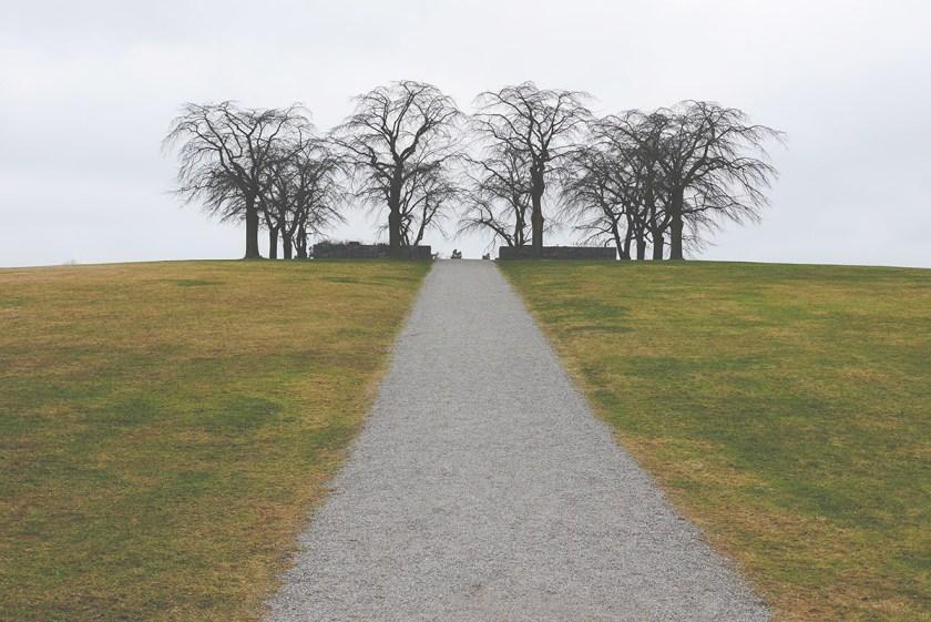 Symmetry photo