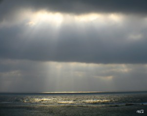 rays_of_hope_05