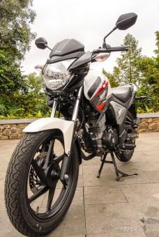 Honda NMP FI-0981