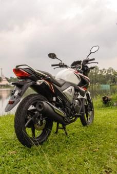 Honda NMP FI-1134