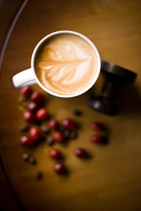 Macehat Coffee 13