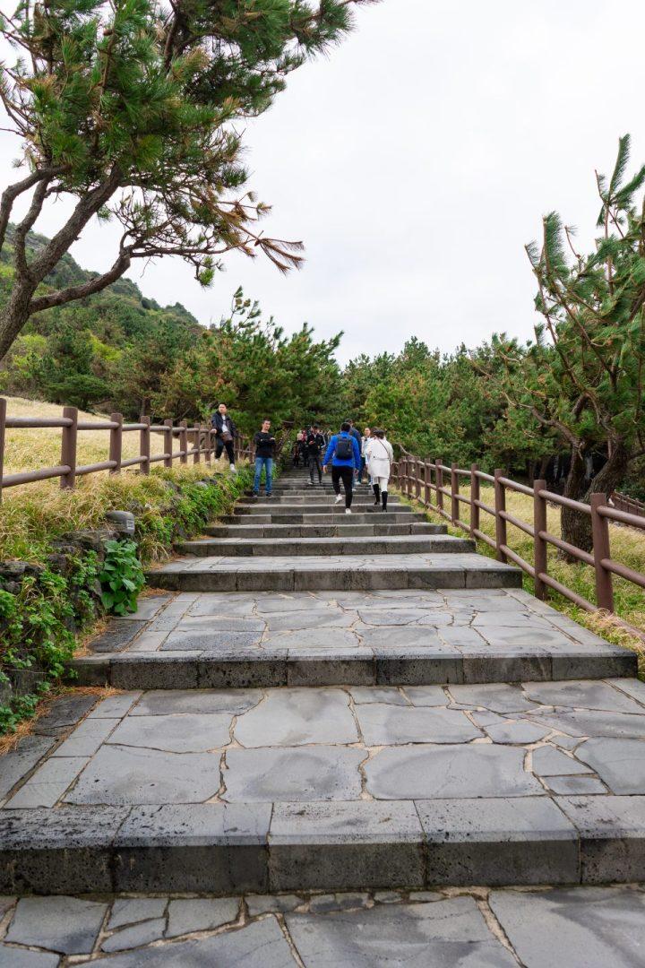 Makan Gurita Hidup-Hidup—Makanmana South Korea Trip Part I 31