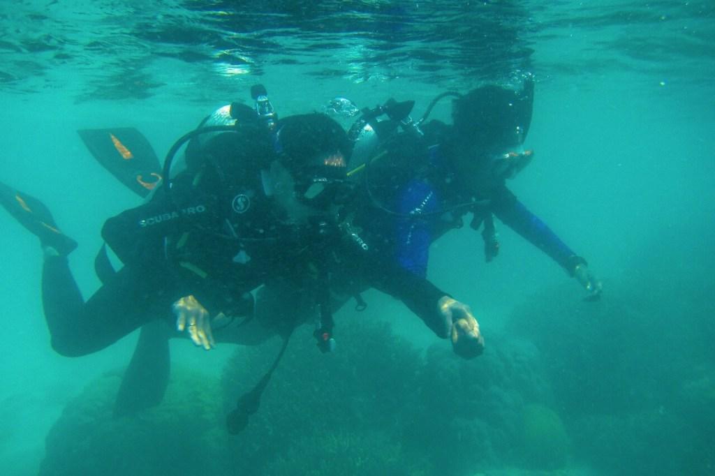 Mulai Dengan Try Scuba, Untuk Merasakan Bernafas di Dalam Air