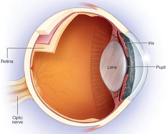 optic-neuritis-treatment