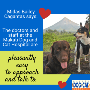Happy Client: Midas Bailey Cagantas