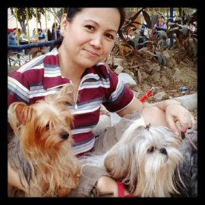 Diwani and Magie: Shihtzu and Yorki