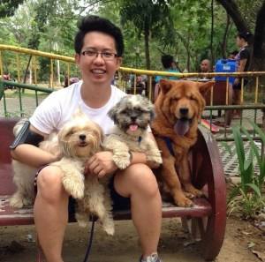 annie, potch, blue:	shih tzu and chowchow