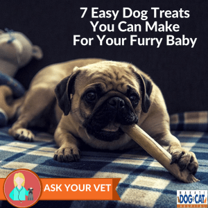 7 Easy Dog Treats You Can Make For Your Furry Baby